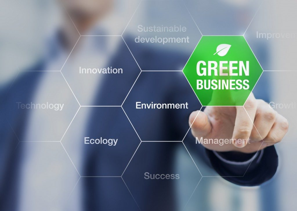become an eco-friendly business
