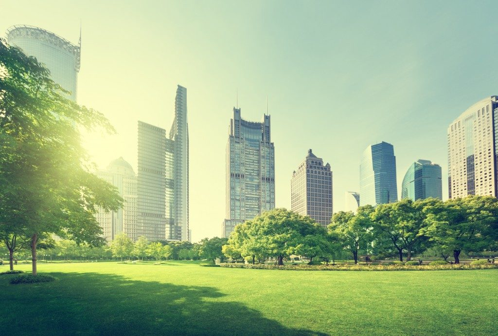 City near a park