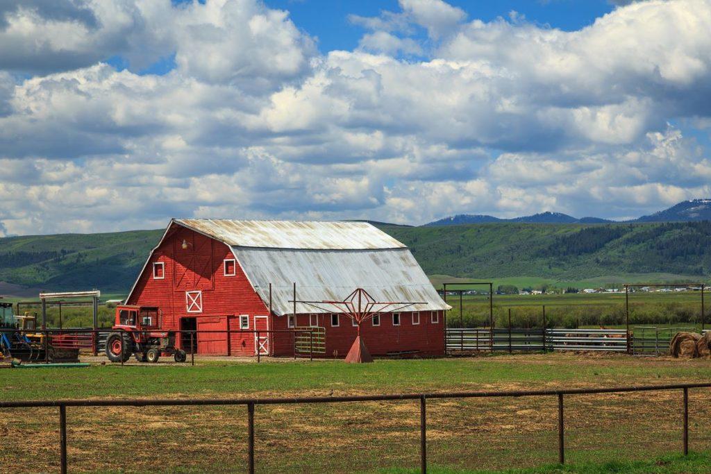 farm red barn