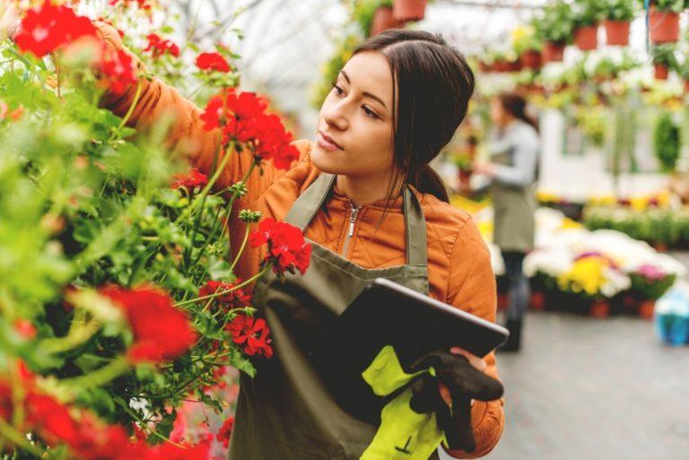 gardening business owner