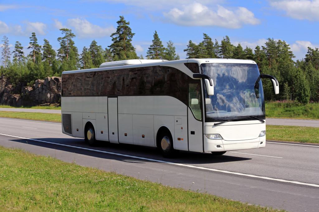 white coach bus